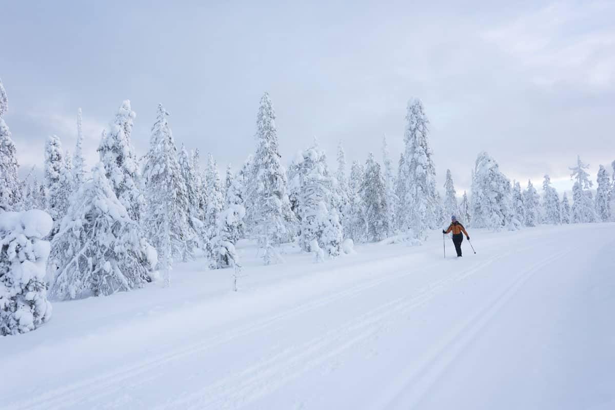 Cross Country Skiing in Finnish Lapland