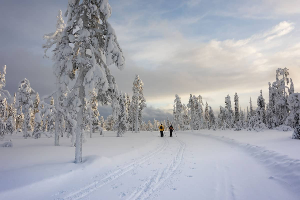 Cross country Skiing Together in Finnish Lapland