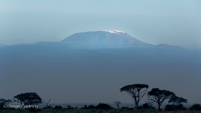 Mount Kilimanjaro at Twilight