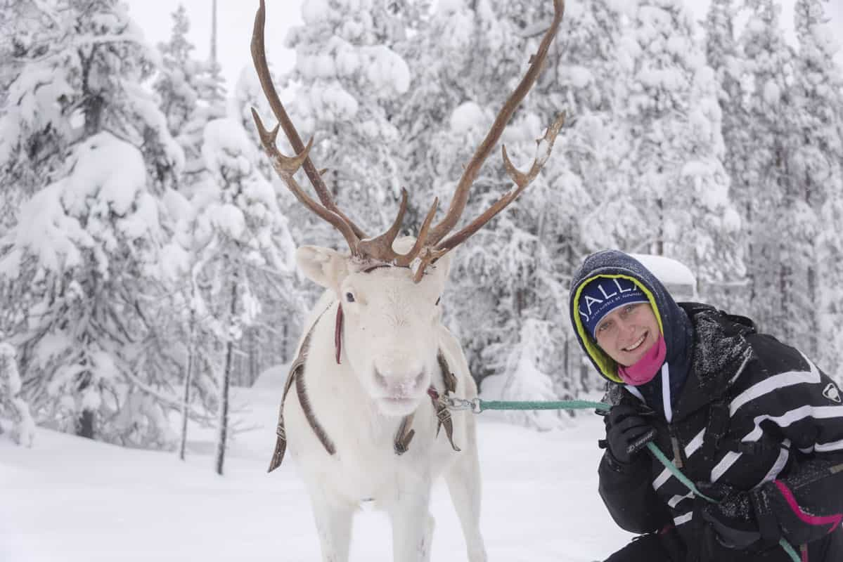Margherita Ragg with Reindeer in Finnish Lapland