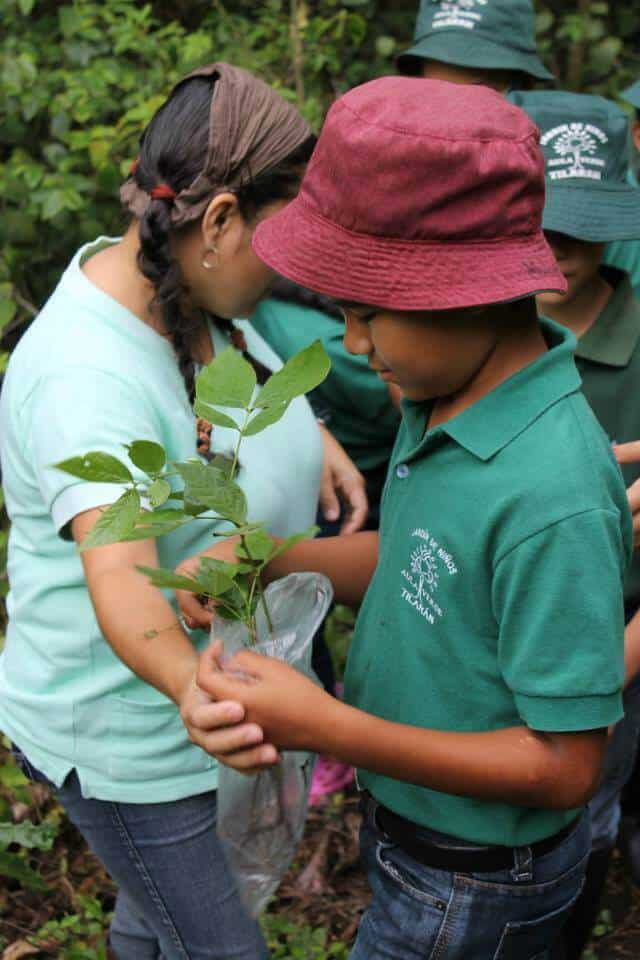 Things you can do in Costa Rica -Volunteer to plant trees with La Reserva Forest Foundation