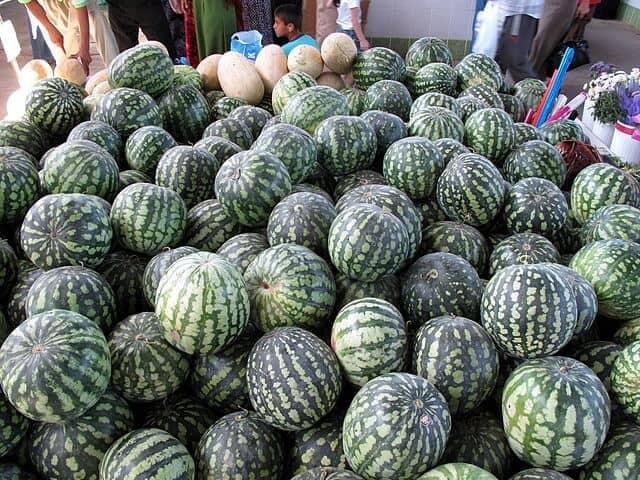 Turkmenistan Melons