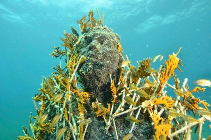 Snorkel Cancun Underwater Museum of Art