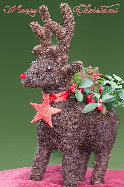 Fun Christmas Facts -Rudolph the Red-Nosed Reindeer