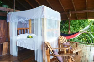 Places to stay near Corcovado National Park -Lookout Inn