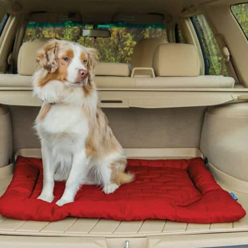 Gift Ideas for Pet Lovers -Kurgo Loft Wander Dog Bed