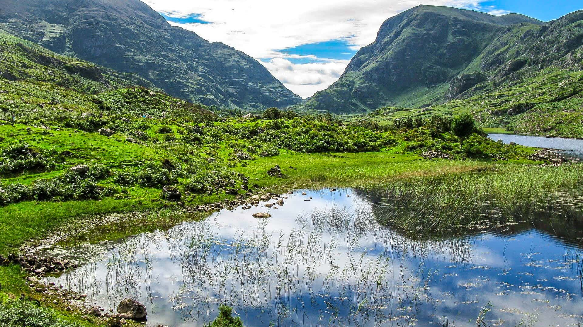 Things to do in Ireland for nature lovers -Killarney National Park