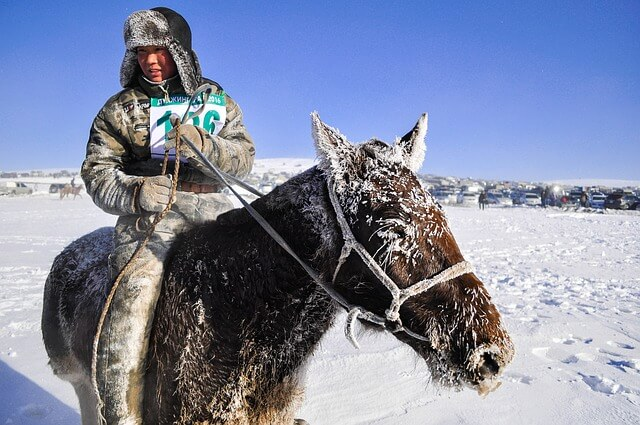 Mongolian horse and rider via pixabay