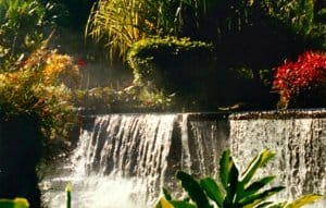 Costa Rica Travel Guide -Tabacon Hot Springs