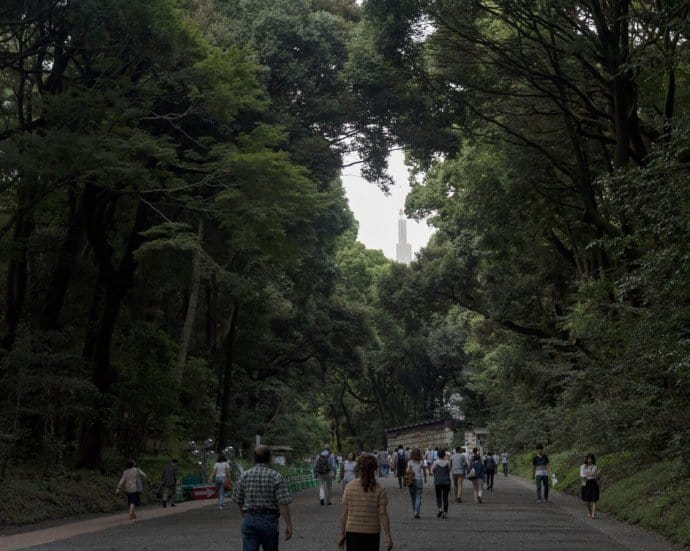 Japan Photos: Tokyo's Meiji shrine forest