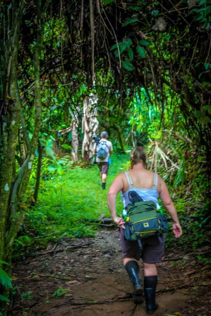 Ecotourism in Costa Rica -Hiking in Corcovado National Park