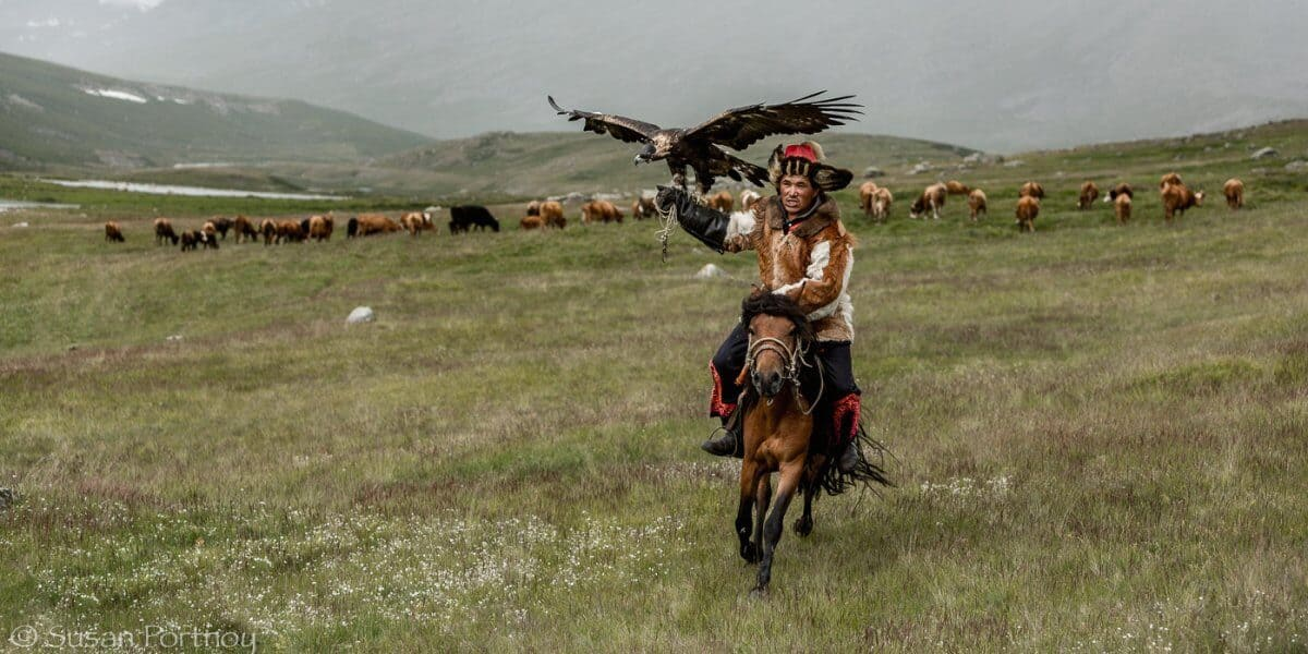 Mongolian Culture- Eagle Hunter