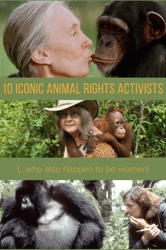 10 ICONIC ANIMAL RIGHTS ACTIVISTS