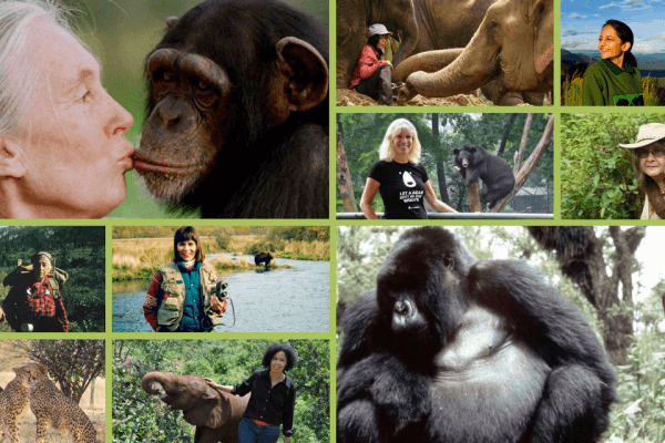 Inspirational Animal Rights Activists (15 Female Heroes)