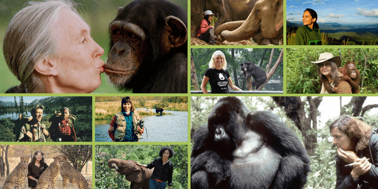 10 Inspirational Animal Rights Activists (Who Happen to Be Women)