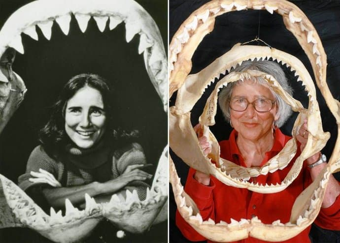 Shark Lady Eugenie Clark - Shark Conservation Pioneer