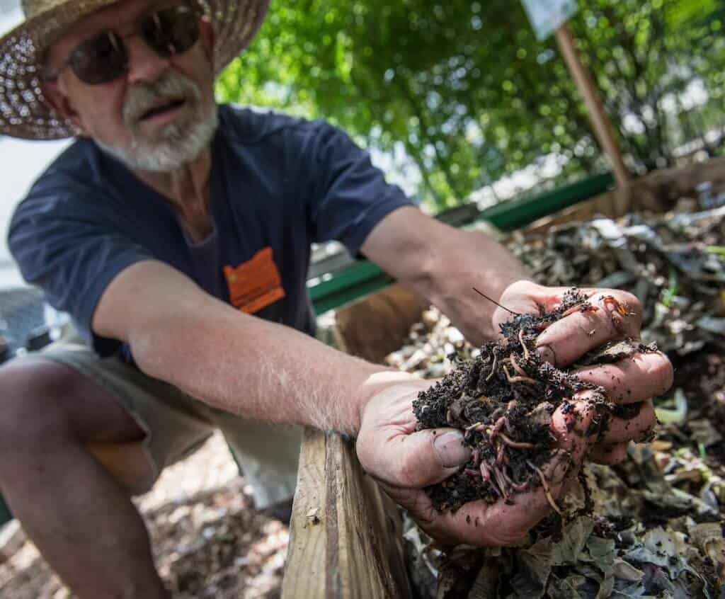 Worm Composting -Permaculture Gardening Techniques