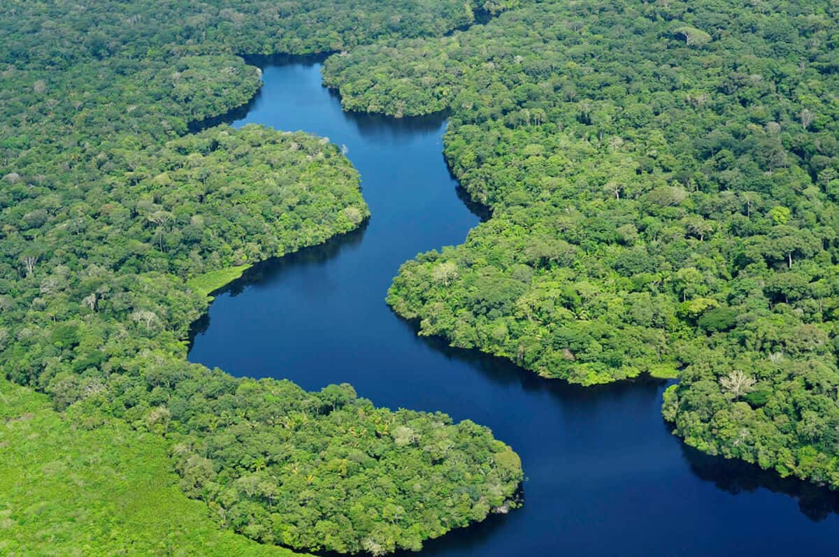 10 MOST BEAUTIFUL FORESTS: Amazon