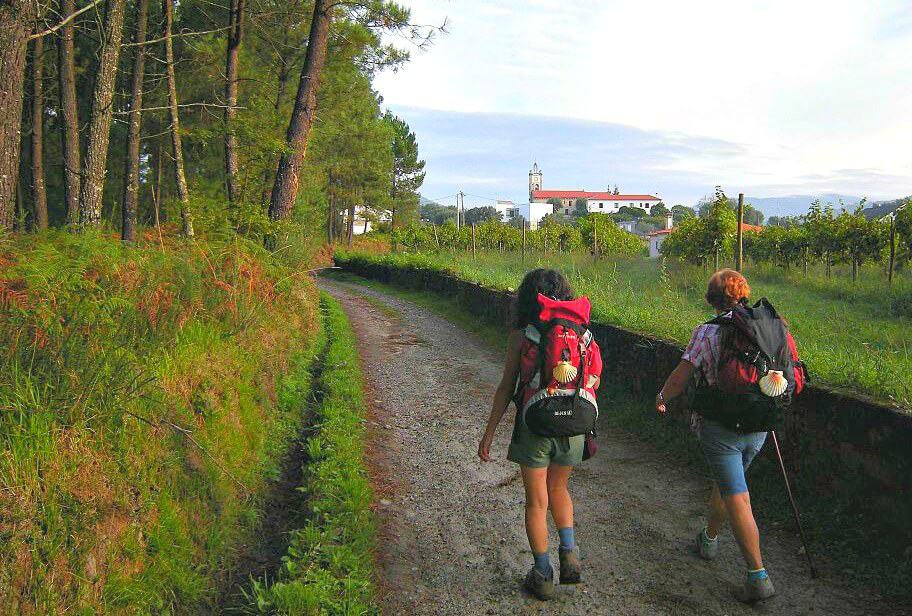 Things To Do In Portugal For Nature Lovers- Walk Camino Portugués