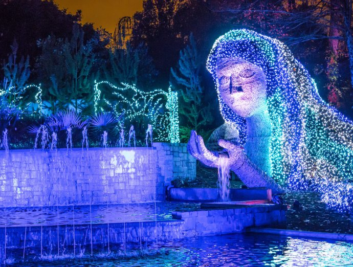 Atlanta Christmas Lights - Atlanta Botanical Gardens