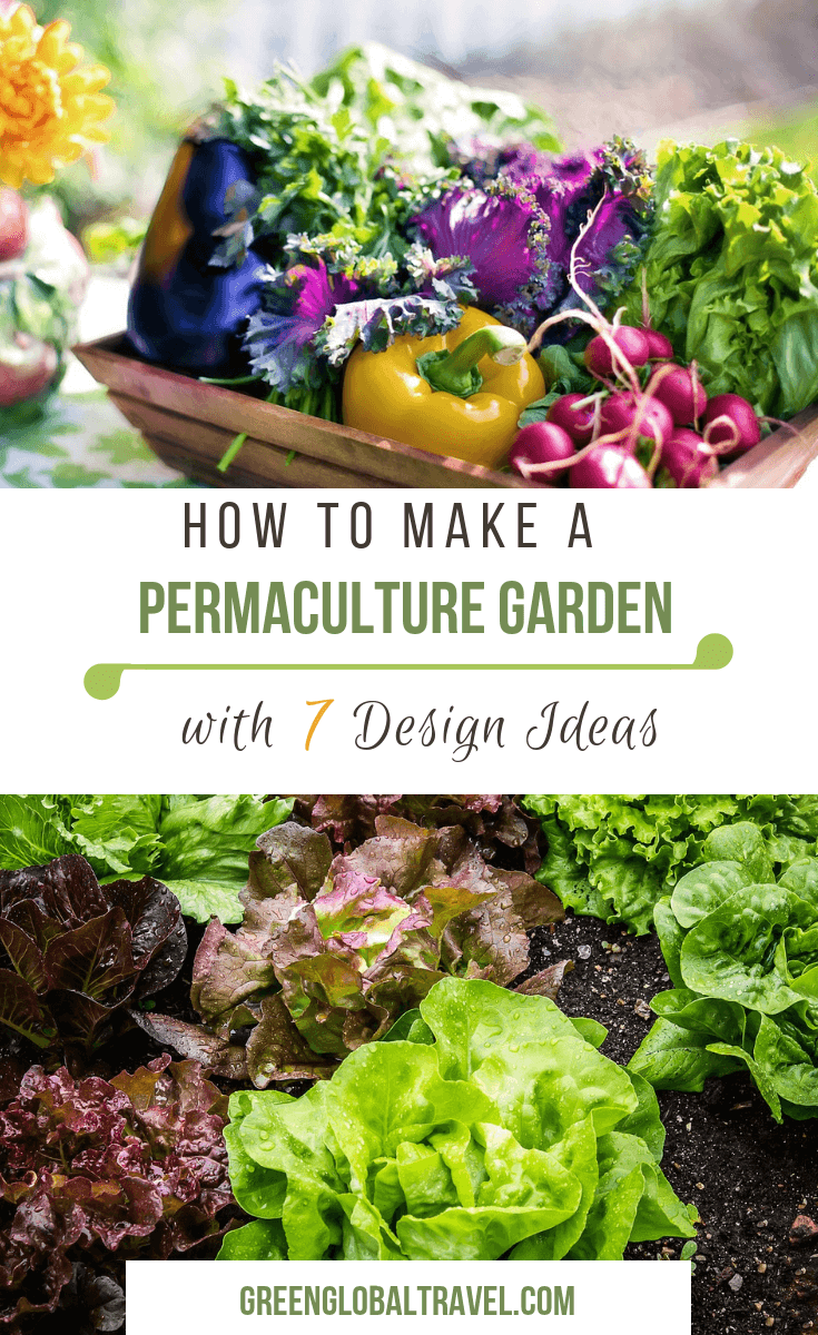 What Is Permaculture Gardening? An Intro to Permaculture ... Permaculture Food Garden Design on modern garden design, veggie garden design, herb garden design, landscape design, companion planting garden design, high tunnel garden design, vegetable garden design, horticultural therapy garden design, water garden design, simple house garden design, forest garden design, bioretention garden design, swale garden design, bioshelter design, livestock garden design, xeriscape garden design, home garden design, keyhole garden design, cutting flowers garden design, sustainable garden design,