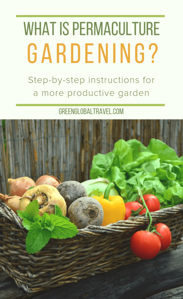 What Is Permaculture Gardening? An Intro to Permaculture Design & Principles. Includes step-by-step instructions for making your own garden more fruitful and sustainable for long term benefits. via @greenglobaltrvl #permaculture #permaculturebeginner #permaculturedesign #permaculturegardening #Permaculturegarden