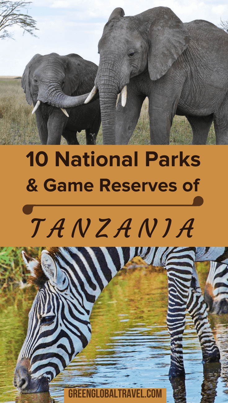The Top 10 Tanzania National Parks & Reserves. Our Tanzania safari guide includes Kilimanjaro, Serengeti, Tarangire & numerous lesser known gems. | Tanzania Travel | Tanzania Wildlife | Tanzania Africa via @greenglobaltrvl
