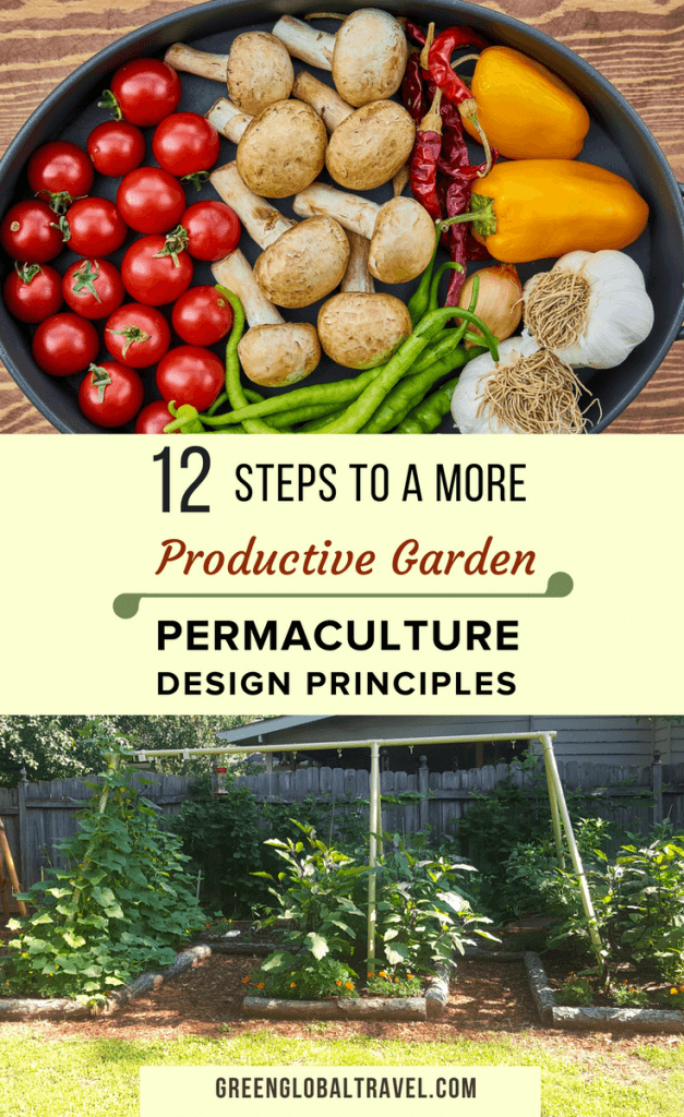12 Permaculture Design Garden Ideas. Simple Step By Step Guide To  Permaculture Gardening. Includes