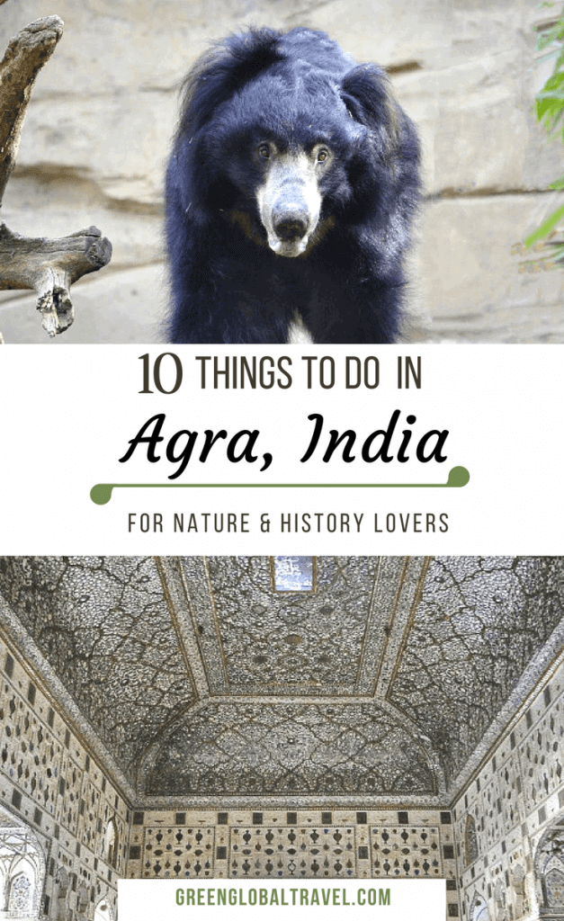 10 Things to do in Agra India for Nature and History Lovers via @greenglobaltrvl