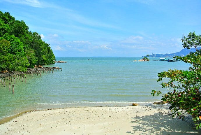 Things to do in Penang Island -Visit Penang National Park