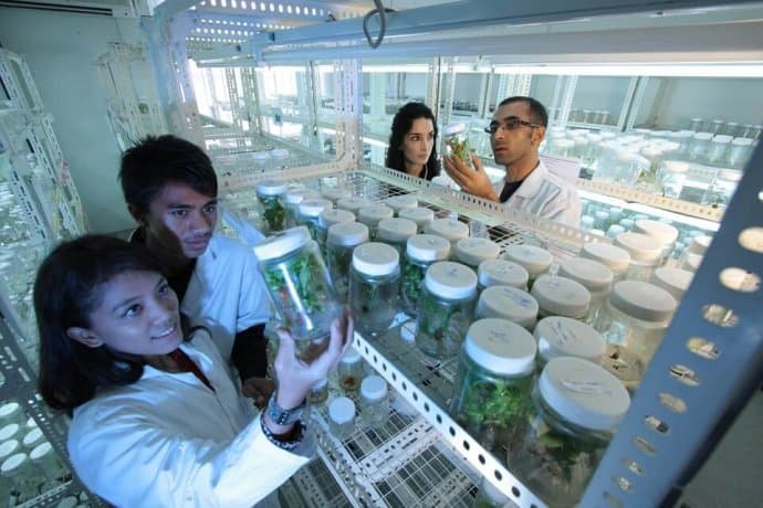 Plant Biotechnology Laboratory