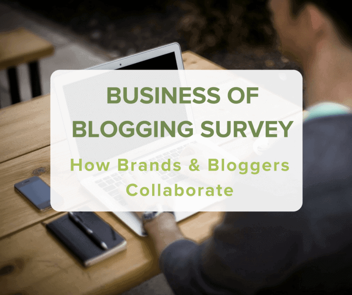 Travel Blogging Business Survey