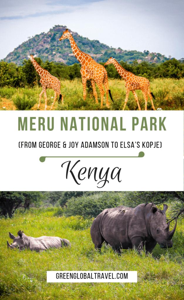 Meru National Park Kenya (from George & Joy Adamson to Elsa's Kopje) via @greenglobaltrvl #Kenyatravel #Kenyasafari #BornfreeMovie #joyadamsonelsa #joyadamsonnationalparks #elsathelioness #KenyaNationalPark