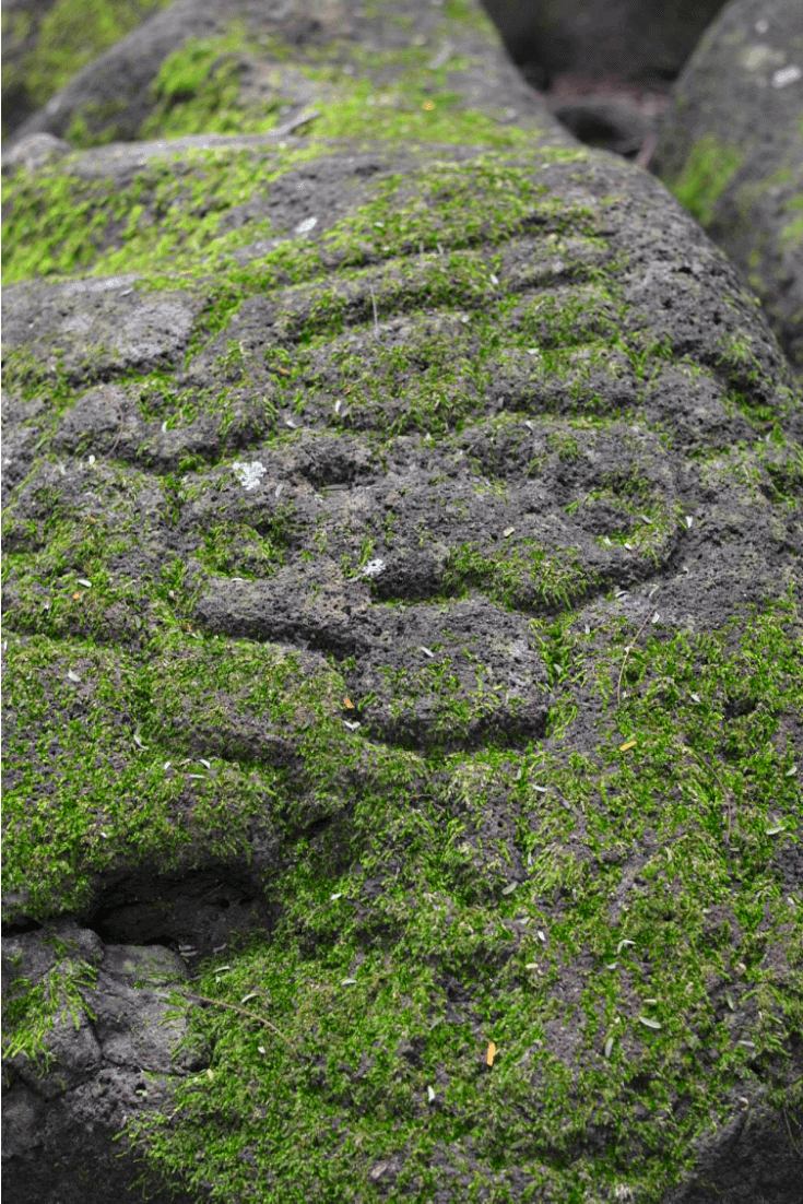 Petroglyphs on Ometepe Island - Finca Magdalena