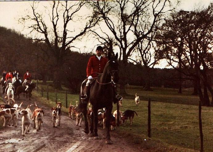 15 Harmful Traditions - Fox Hunting in the UK