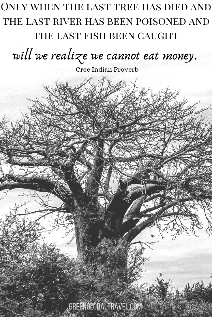 "Nature Quotes ""Only when the last tree has died and the last river been poisoned and the last fish been caught will we realize we cannot eat money."" –Cree Indian Proverb"