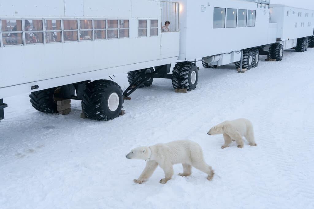 Unusual Hotels - Tundra Buggy Lodge