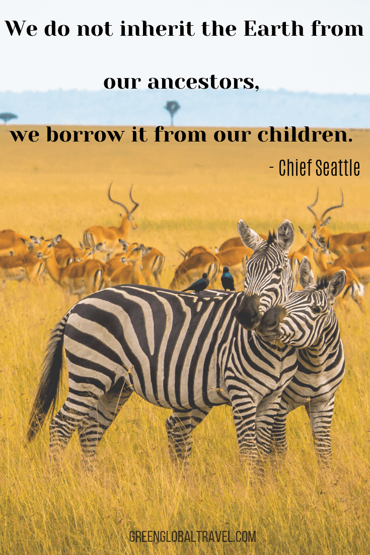 Family Travel Quotes - We do not inherit the earth