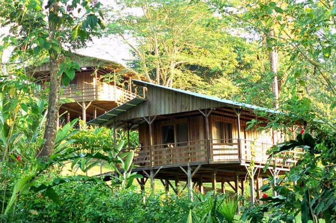 Eco Lodge Costa Rica - Selva Banaito Lodge