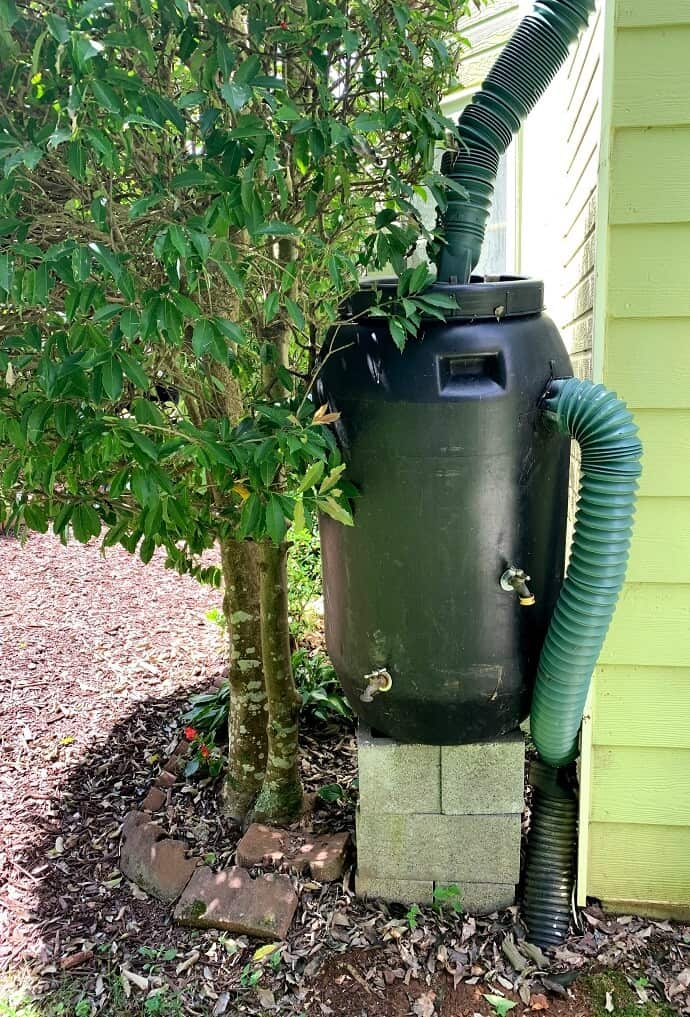 Rainwater Harvesting System with overflow drain