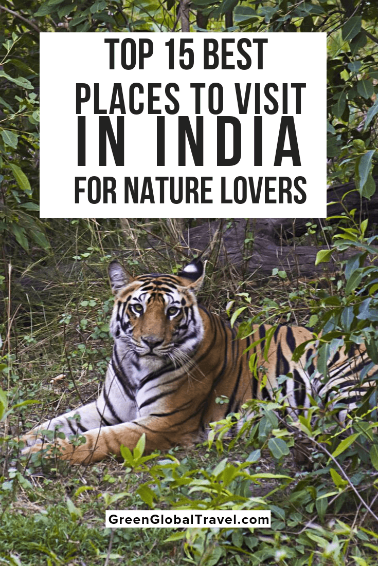 The 15 Best Places to Visit in India for Nature Lovers including the best time to visit India, Map of National Parks & Tiger Reserves in India & more! | holiday destinations in india | beautiful places in india | best holiday destinations in india | tourist attractions in india | Beautiful places to visit in india | best tourist places in india | places to see in india |places to go in india | top places to visit in india | best places to visit in india | famous tourist places in india