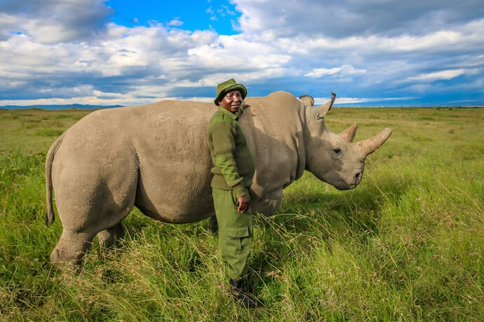 Northern White Rhinos in Ol Pejeta Conservancy, Kenya