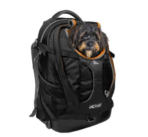 Kurgo G-Train K9 Pack-V2