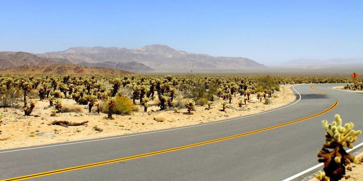 Joshua Tree National Park Roads