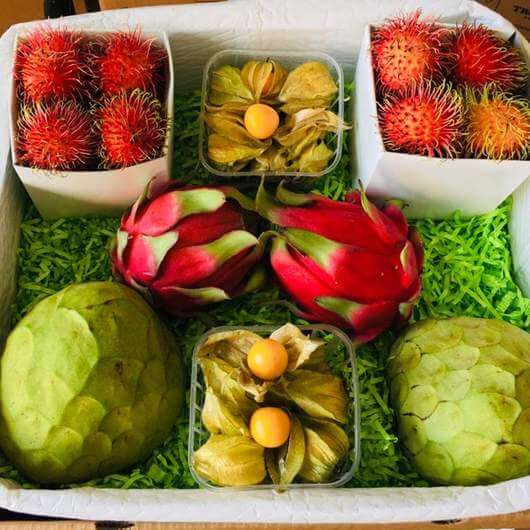 Exotic Fruit Box from Tropicalfruit.com