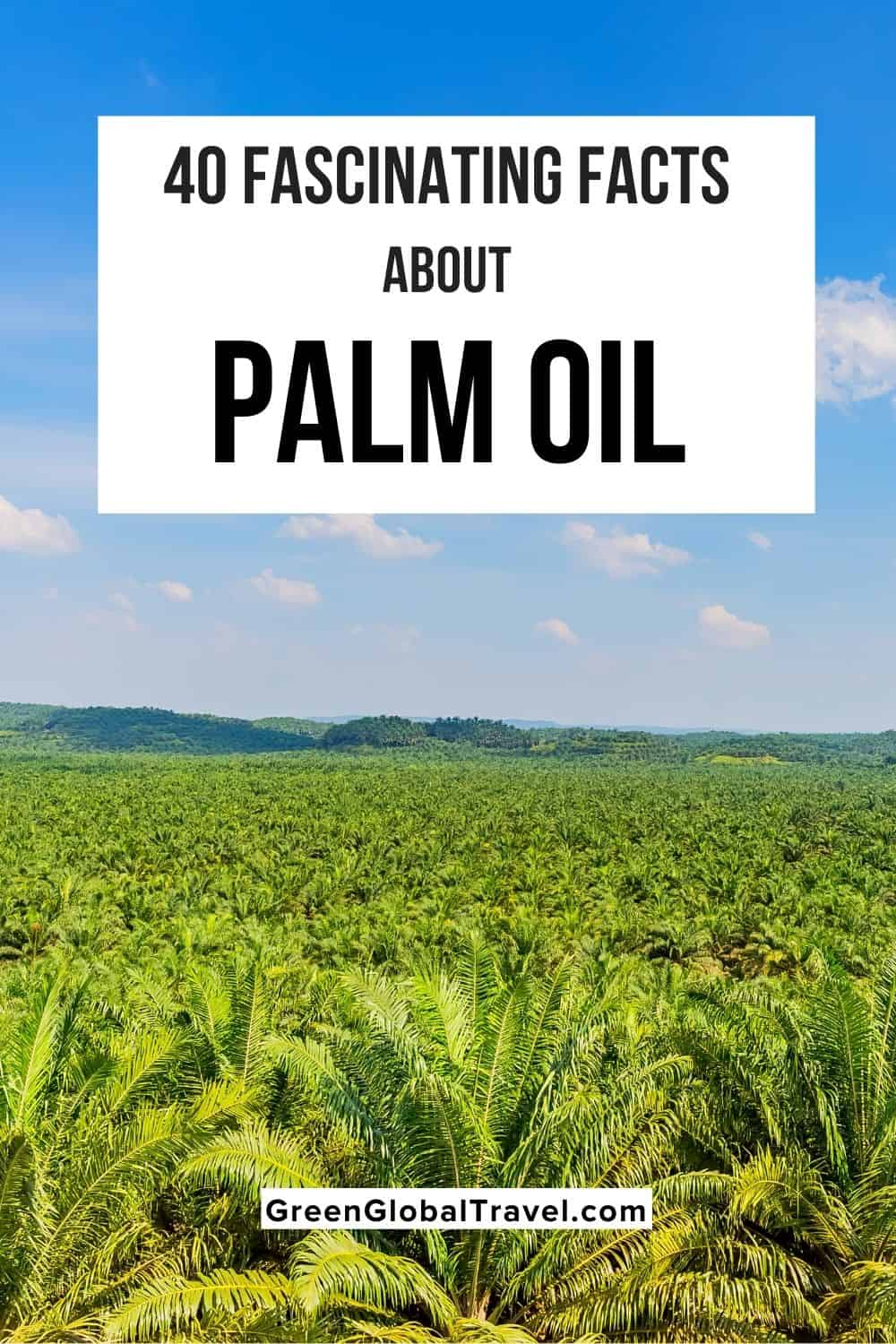 40 Fascinating Facts about Palm Oil including Deforestation for Palm Oil, Palm Oil & Orangutans, Facts About Sustainable Palm Oil, Palm Oil Products List and more!