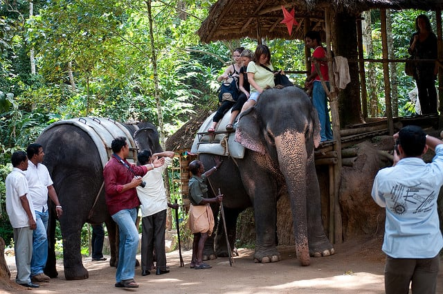 15 Harmful Traditions - Elephant Rides