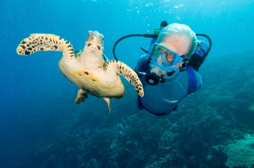 Jean_Michel_Cousteau_Turtle