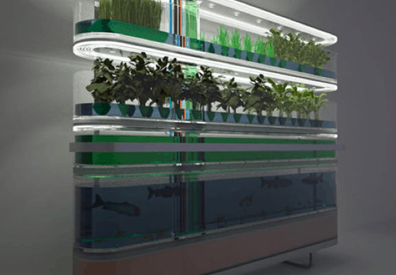 GO GREEN TIP #82: DIY Aquaponics – The Future of Green Gardening