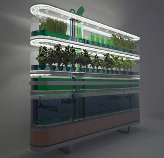 Diy Aquaponics The Future Of Green Gardening